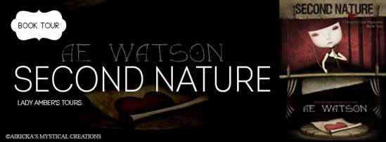 Second Nature Tour Banner